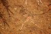 DSC06224 - NAMIBIA 2017 (HerryB) Tags: 2017 southafrica afrique afrika namibia namib südwest sonyalpha77 sonyalpha99 tamron alpha sony bechen heribert heribertbechen fotos photos photography herryb rockart rockpaintings peintres rupestres san zeichnungen felszeichnungen höhlenmalerei paintings bushmen buschmänner dstretch harman jon jonharman enhance falschfarben restauration digitalenhanced enhancement verwitterung granit granite weathering brandberg shelter überhang whitelady tsisab brandbergmassiv schlucht tal