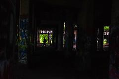 Secret World (phillytrax) Tags: philadelphia philly pa pennsylvania cityofbrotherlylove 215 city urban usa america unitedstates metropolis metropolitan portrichmond graffitipier abandonedcoalpier graffiti streetart tagging vandalism urbex urbanexploration shadow contrast