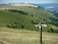 View from Devils Dyke, South Downs Way, Sussex (alanhitchcock49) Tags: sussex july 2017 devils dyke south downs way