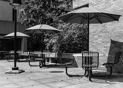 No Customers During Lunch (that_damn_duck) Tags: blackandwhite monochrome universityofsouthcarolina cafe umbrella chairs tables outdoorcafe bw blackwhite usc