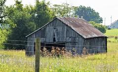 Countryside (robgividenonyx) Tags: kentucky barn abandoned ruraldecay