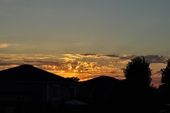 golden sky (ladybugdiscovery) Tags: clouds sky sunset golden brilliant evening rooftops trees silhouette