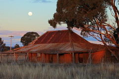 Full Moon, Empty House (Darren Schiller) Tags: abandoned australia architecture building corrugatediron derelict disused decaying deserted dilapidated decay dusk empty evening farming farmhouse galvanisediron history heritage house iron landscape moon newsouthwales old rural rustic ruins rusty tin tomingley