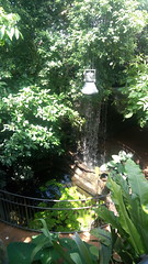 39.Nel Giardino Tropicale