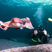 Sepia apama photo shoot #marineexplorer