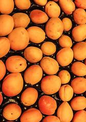 Week 29 Fruit (CliveOM-D E-M10) Tags: fruit olympus omdem10 omd apricot