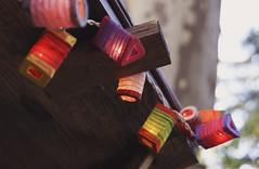 Farolillos (LauraSujanani) Tags: rumm market mercado foodtrucks food comida