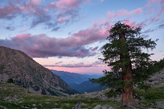 Sunset on valley of Tinée (Tonio06fr) Tags: aturpaudfotocom daylight natural landscape sunset valley cloudy mercantour summer sky mercantournationalpark clouds larch day mountain