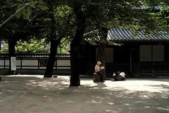 DSCF6789 (keita matsubara) Tags: kawagoe saitama 川越 さいたま 埼玉 日本 japan