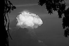 FUTURAMA (ddt_uul) Tags: clouds storm future leaves frame politics