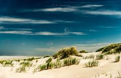 Spiekeroog Beach (Timo Rehpenning) Tags: trphotography eastfrisia spiekeroog beach northsea ostfriesland sea vacation nikon d800 clouds sky sand landscape dunes