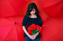 Red (Sài gòn-01665 374 974) Tags: yellow snor sony sigma photography photographer flickr digital new featured light art life colorful colour colours photoshop blend asia camera sweet lens artist amazing bokeh dof depthoffield blur 35mm portrait beauty pretty people woman girl lady person red rose flower