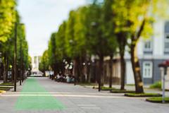 Green Lane | Kaunas #197/365