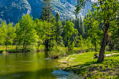 Still Away - Yosemite Valley (randyherring) Tags: recreational nationalparksystem historic park yosemitenationalpark ca mountains beauty outdoor vacation tourism california nature yosemitevalley unitedstates us