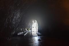 sDSC_4390 (L.Karnas) Tags: slowenien slovenia slovenija sommer summer juli july 2017 postojna cave postojnska jama grotte di postumia höhlen von pivka river inner carniola notranjska littoral