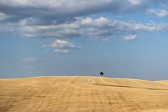 Crete Senesi, Luglio 2017 (masowar (often off, sorry!!)) Tags: toscana tuscany siena provinciadisiena cretesenesi crete strada road roadtonowhere colors summer estate colori nikon nikond800 nikkor clouds cielo sky