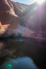 Uluru - Mutitjulu Waterhole-6