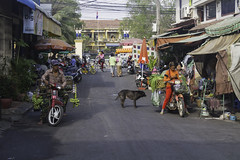 Street 386 (Keith Kelly) Tags: asia cambodia kh kampuchea phnompenh seasia southeastasia street386 aroundtown banana bikes capital city dog life moto school street vegetables vendors