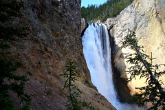 Lower Falls From Uncle Tom's Trail (Bsandtana) Tags: yellowstone wyoming ynp nature canon5d