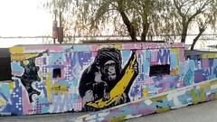 Mystic (emanuelzalazar) Tags: 猴 河 罗萨里奥 艺术 画 画儿 涂鸦 rosario río paraná bar florida art arte rosariograffiti graffiti 酒吧