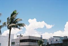 (hanji31) Tags: hualien fujicolor winds