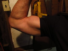 BIG BULGING BICEPS (flexrogers7) Tags: muscular muscles mondo muscle muscleart musclemodel massice round guns strong flexing bodybuilding bizeps bicep biceps big bodybuilder bodybuid bodybuild bicepart bigbiceps abs bizep hugebiceps chest pecs uscles thick jacked triceps exercise flex lats delts shoulders traps hard ripped peaked weightlifter peak huge workout