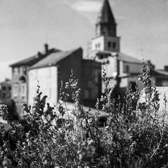 Zadar (Koprek) Tags: yashicamat124g fomapan 200 film landscape zadar croatia adriatic june 2017