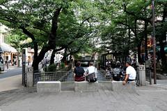 summer, Kyoto (jtabn99) Tags: takasegawa river kyoto summer pigeon 20170715 kiyamachi gion festival 京都 高瀬川 夏 日本 japan nippon nihon
