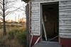 Open Door (Malaacheese) Tags: dead door doorframe fallingapart mess oldbuilding overgrown pieces quiet ruin smashed tree