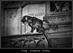 Gargoyles - 27 (fotomänni) Tags: prag prague praha gargoyles gargouille wasserspeier skulptur skulpturen veitsdom blackwhite schwarzweis noirblanc manfredweis