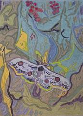 Grand Paon de nuit - St-Rémy-de-Provence - Van Gogh - 1889_0 (Luc II) Tags: vangogh paon grabdpaondenuit saintrémydeprovence
