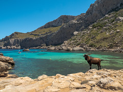 Mallorca - Cap de Formentor (bh-fotografie) Tags: cap formentor mallorca mft microfourthirds m43 spain malle isle insel