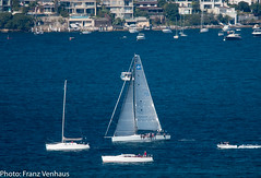 170729_Landrover_Yacht_Race_390.jpg (FranzVenhaus) Tags: sydneyharbour ocean regatta yachts southhead northhead boats heads water sailing sydney nsw australia