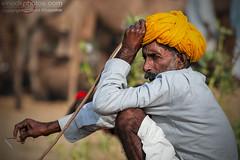 Pushkar Shepherd in Mood (Vinod Khapekar) Tags: india pushkar portrait shepherd camel mood pose turbun man people villager rajasthan canon5dmarkii canon vinodkhapekar vinodkphotos