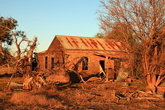 Seen Better Days (Darren Schiller) Tags: abandoned australia architecture building corrugatediron derelict disused decaying deserted dilapidated empty evening farming farmhouse galvanisediron history heritage house newsouthwales old rural rustic ruins rusty sunset tree