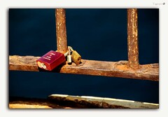 Are you absolutely sure... (tiggerpics2010) Tags: padlocks truelove commitment
