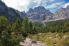 Under the rockface (_Martl_) Tags: austria österreich karwendel alps alpen mountain berge canon eos 70d canon18135mm rocks trees landscape landschaft outdoor nature natur hiking wandern bach wolken himmel sky wall wand felswand