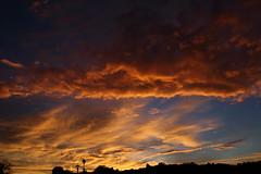Sunset July 26 2017 #20 (Az Skies Photography) Tags: sun set sunset dusk twilight nightfall cloud clouds sky skyline skyscape skycandy skyfire red orange yellow gold golden salmon black canon eos 80d canoneos80d eos80d rio rico arizona az riorico rioricoaz arizonasky arizonaskyline arizonaskyscape arizonaskycandy arizonaskyfire july 26 2017 july262017 72617 7262017