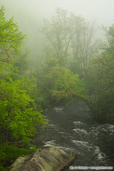 Naugatuck Eternal (J. G. Coleman Photography) Tags: connecticut naugatuckriver newengland nutmegstate southernnewengland thomaston fog forest mist river spring springtime water woodlands woods us usa nature outdoors natural wild wildlands outside landscape riverscape