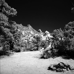 Encampment (Scott Holcomb) Tags: carutherscanyon newyorkmountains mojavenationalpreserve california kowasix kowa13555lens hoyar7267mmfilter rolleiir400film bw 6x6 120film mediumformat epsonperfectionv600 photoshopdigitalization