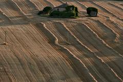 summer texture 3 (luporosso) Tags: natura nature naturalmente naturaleza nikon scorcio scorci country countryside campagna marche italia italy paglia straw