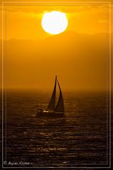 Sailing Away! California Socal. (bryanasmar) Tags: california socal nikon d7000 400 28 28400 sailing away sunset