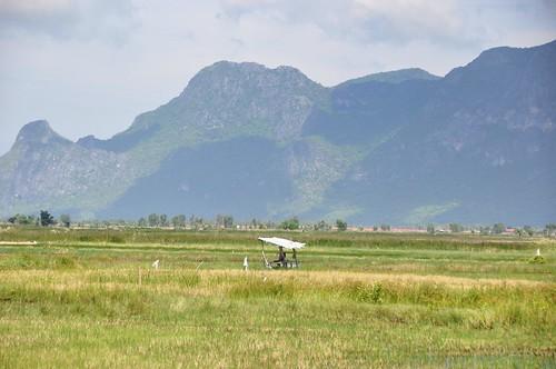 parc national sam roi yot - thailande 76