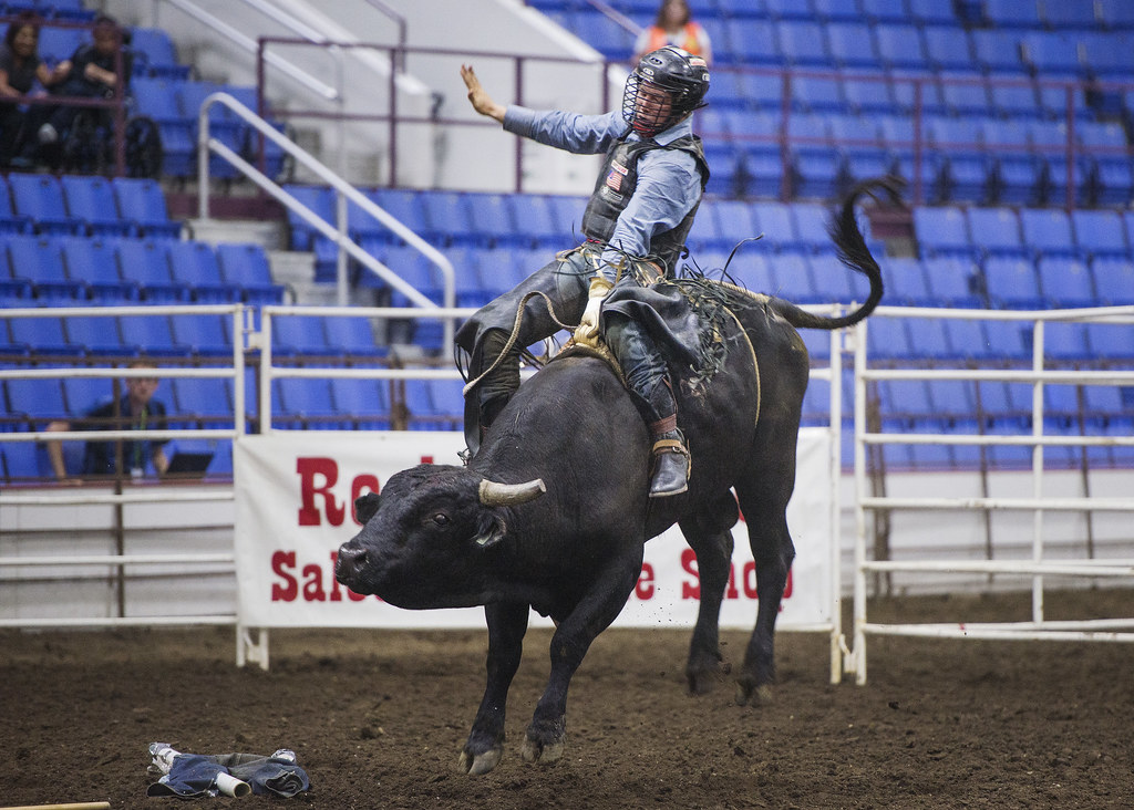 The World S Most Recently Posted Photos Of Bullriding And