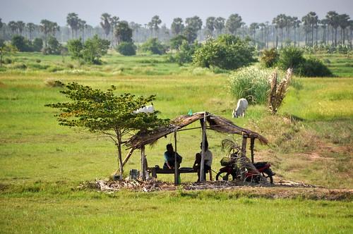 parc national sam roi yot - thailande 89