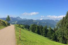 Blick zum Speer zwischen Hemberg und Neu St. Johann