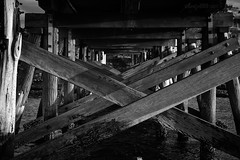 Under the boardwalk (astrogirl969) Tags: fujifilm xe1 fujifilmxc50230mmf4567ois laperouse bridge blackandwhite monochrome postprocessed silverefexpro filmsimulation kodaktmax100filmsimulation tmax100 iwps outing outdoor boardwalk wood scaffold 5faves
