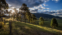 Almost end of day (OzzRod) Tags: pentax k1 hdpentaxdfa2470mmf28 landscape rural farmland sun rays sunburst trees dailyinjuly2017 akolele
