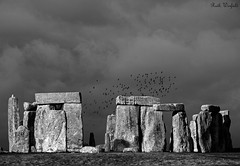 Megalith Monochrome (WinRuWorld) Tags: monochrome bw blackandwhite sky stonehenge monolith prehistoric prehistoricmonument wiltshire uk england greatbritain winter clouds storm stones bluestones scheduledancientmonument canon canon60d canoneos60d outdoors efs1855mmf3556isii famousplaces neolithic stoneage pagan druids heathenry wicca megalith bronzeage blackwhite englishheritage unitedkingdom monument