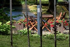 The neighbour's garden (Poupetta) Tags: garden fence helsinki